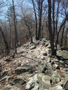 rocks-1224580_1920