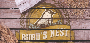 burds nest brewing co